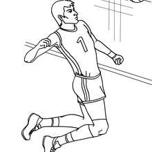 Coloriage VOLLEYEUR - Coloriage - Coloriage SPORT - Coloriage VOLLEYBALL