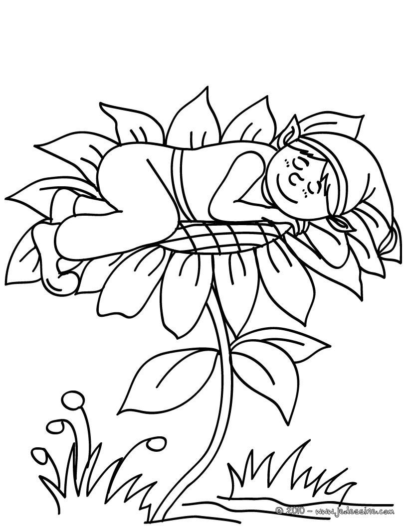 Coloriage : Un ELFE dormant à colorier