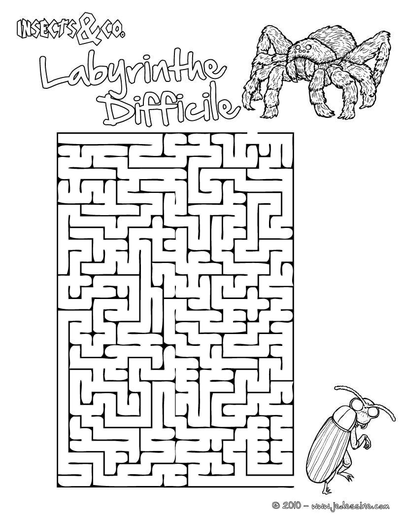 Jeux de labyrinthe difficile insects co - Jeux labyrinthe a imprimer ...