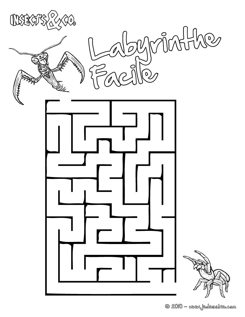 Jeux de labyrinthe facile insects co - Labyrinthe dessin ...