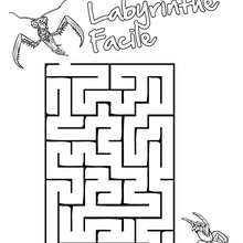 Labyrinthe Facile Insects&Co - Jeux - Jeux de Labyrinthes - Les labyrinthes Insects&Co