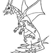 Coloriage : Dragon dans son armure