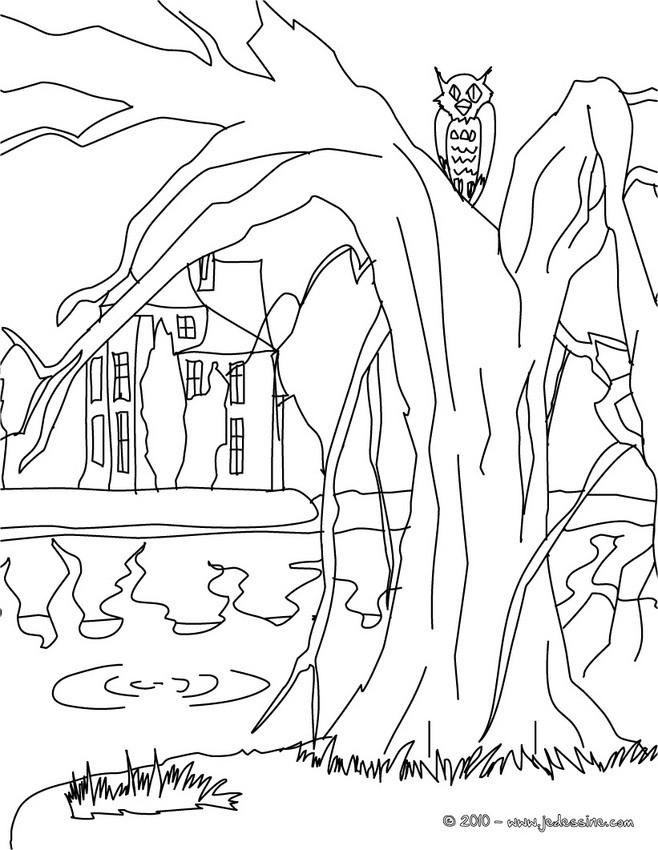 Coloriages chateau hante colorier - Dessin de maison hantee ...