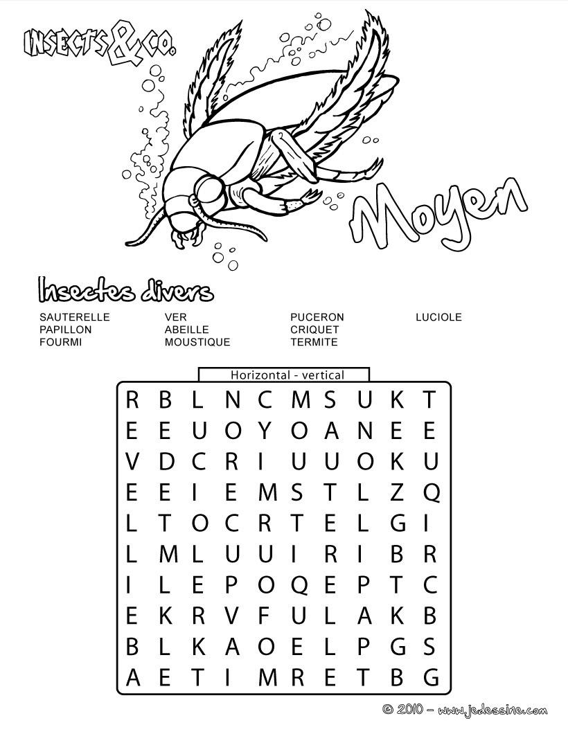 Moyen : 15 insectes cachés