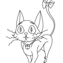 coloriage gratuit chat halloween - Coloriage - Coloriage FETES - Coloriage HALLOWEEN - Coloriage CHAT HALLOWEEN