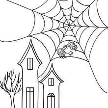 Coloriage d'Halloween : araignée devant château halloween