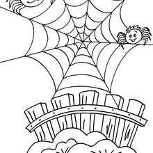 Coloriage d'Halloween : araignees a colorier gratuites