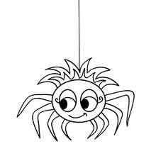 Coloriage d'Halloween : coloriage araignée halloween