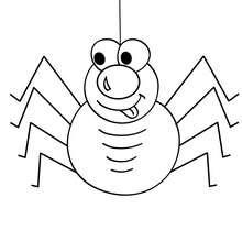 Coloriage d'Halloween : araignée a colorier gratuite