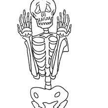 squelette gratuit à colorier - Coloriage - Coloriage FETES - Coloriage HALLOWEEN - Coloriage SQUELETTE HALLOWEEN
