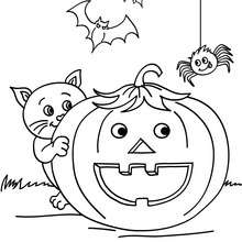chat rigolot à imprimer - Coloriage - Coloriage FETES - Coloriage HALLOWEEN - Coloriage CHAT HALLOWEEN