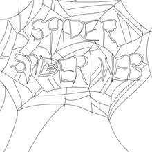Coloriage d'Halloween : toite d'araignée gratuite à colorier