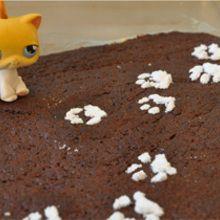 Recette : Gâteau au chocolat des chatons
