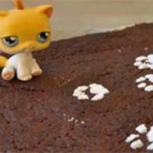 Recette : Gâteau au chocolat des châtons