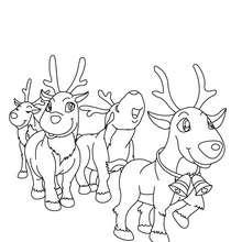 Coloriage Rennes et Rudolph gratuit - Coloriage - Coloriage FETES - Coloriage NOEL - Coloriage RENNES DU PERE NOEL - Coloriages RENNES DU PERE NOEL