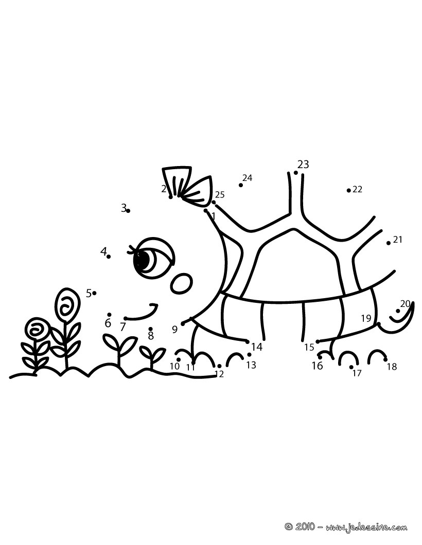 petite tortue souriante jeux jeux de points relier points relier animaux