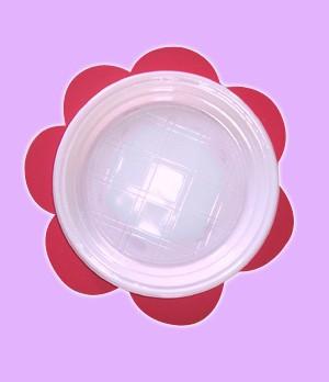 Fiche bricolage : Les assiettes fleurs de Fée