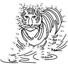 Tigre du bengale - Jeux - Jeux de Points à relier - Points à relier Animaux difficiles