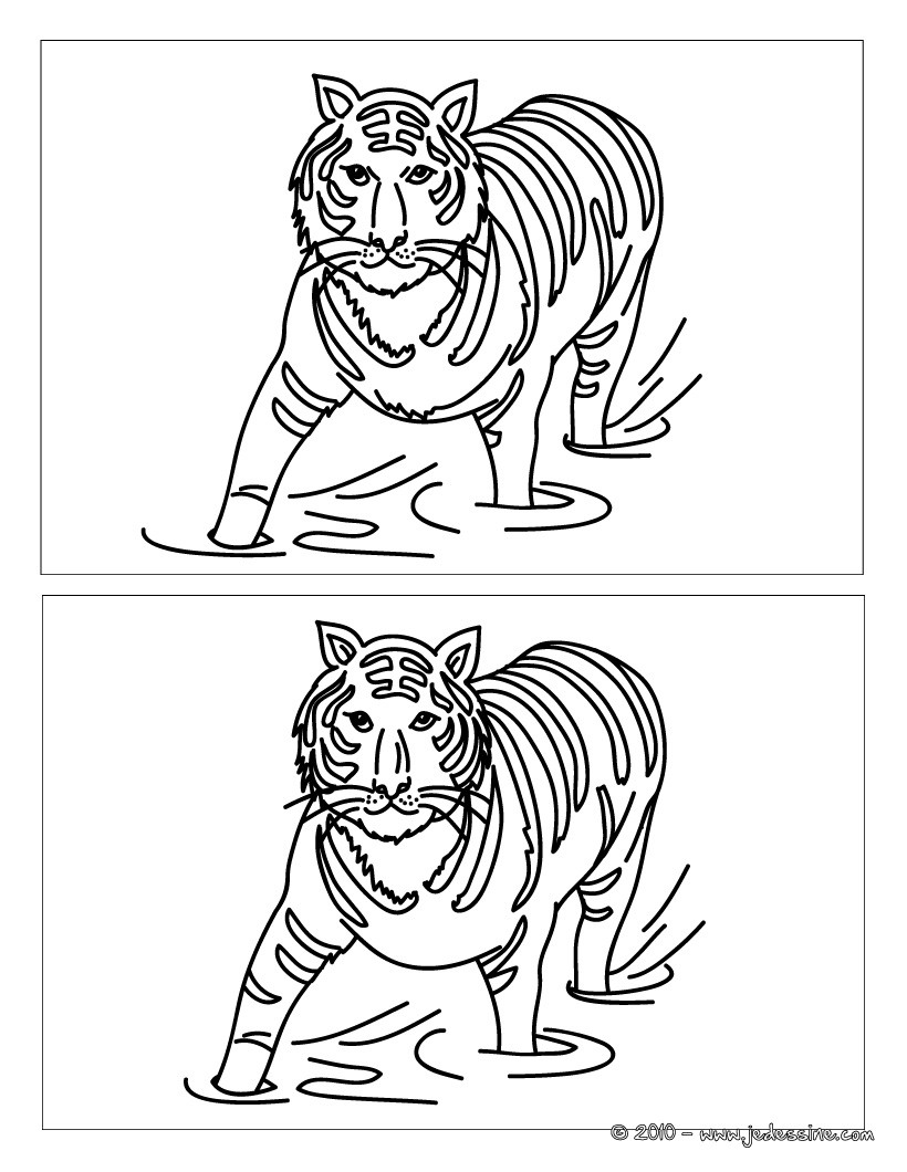 Jeux de le tigre dans la jungle - Jeux des as de la jungle ...