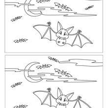 Jeu des différences : Chauve-souris en vol 10 différences