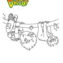COloriage DIEGO et le singe - Coloriage - Coloriage DESSINS ANIMES - Coloriage DIEGO