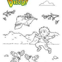 DIEGO et les animaux à colorier - Coloriage - Coloriage DESSINS ANIMES - Coloriage DIEGO