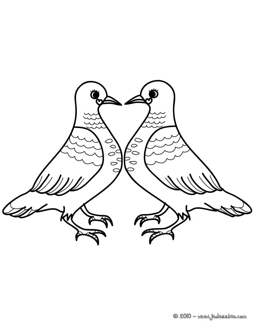 Coloriages Coloriage Couple Pigeons Gratuit Frhellokidscom