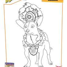 Coloriage : Le Chihuahua de Beverly Hills