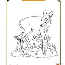 Coloriage Bambi et sa Maman - Coloriage - Coloriage DISNEY - Coloriage BAMBI