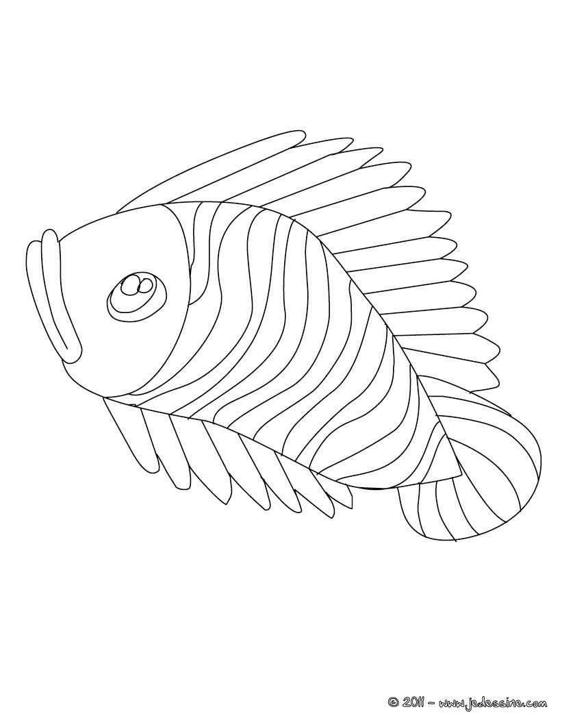 poisson davril coloriage gratuit