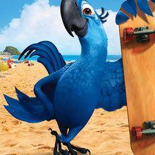 BLU - Ara de Spix bleu - Dessin - Les Personnages de RIO Le Film