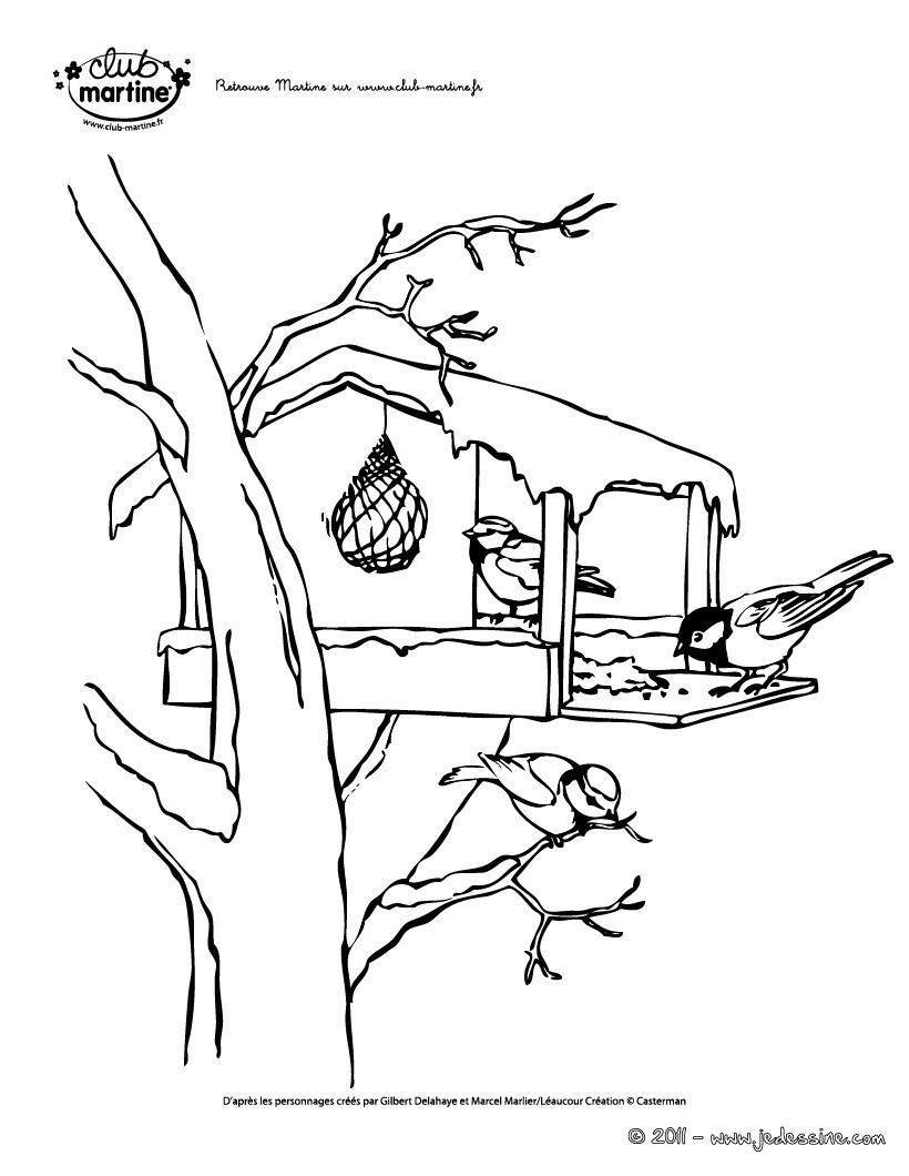Coloriages martine coloriage oiseaux - Martine dessin ...