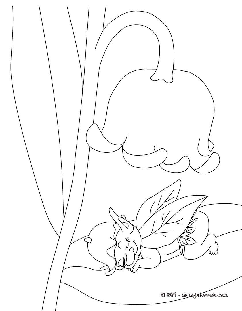 Coloriages muguet porte bonheur coloriage imprimer fr - Fleur a imprimer gratuit ...