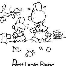 PETIT LAPIN BLANC à colorier - Coloriage - Coloriage PETIT LAPIN BLANC
