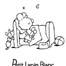 PETIT LAPIN BLANC à imprimer - Coloriage - Coloriage PETIT LAPIN BLANC