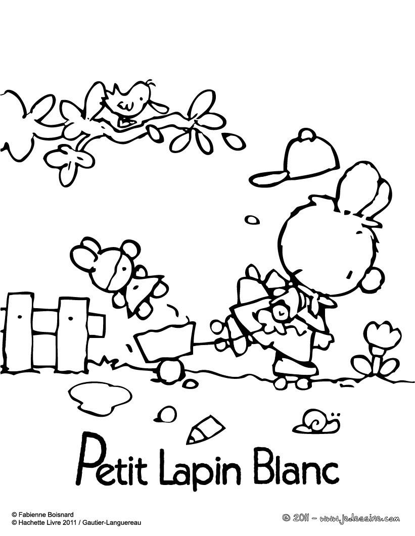 Coloriages petit lapin blanc imprimer gratuitement - Coloriage petit lapin ...