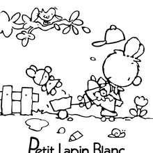 Coloriage : PETIT LAPIN BLANC à imprimer gratuitement
