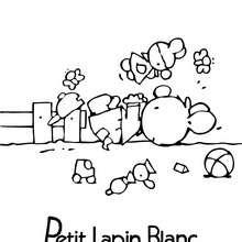 PETIT LAPIN BLANC à dessiner - Coloriage - Coloriage PETIT LAPIN BLANC