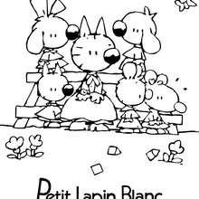 Coloriages de PETIT LAPIN BLANC - Coloriage - Coloriage PETIT LAPIN BLANC