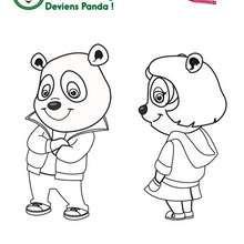 Les pandas de Panfu