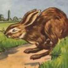 Les coureurs - Lecture - CONTES CLASSIQUES - Les contes d'Andersen