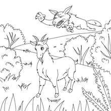 Coloriage Blanchette la chèvre de M. Seguin - Coloriage - Coloriage de CONTES CELEBRES - Contes de DAUDET à colorier