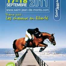 CAVAL'OCÉANE : Les chevaux en liberté