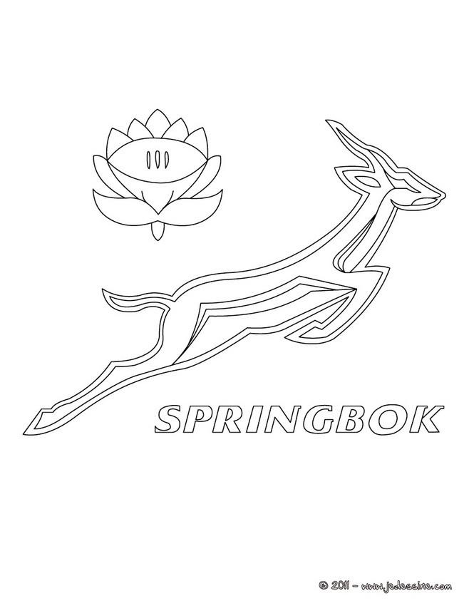 Coloriages Blason Des Spring Box D Afrique Du Sud Fr Hellokids Com