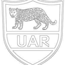 Coloriage équipe de Rugby ARGENTINE - Coloriage - Coloriage SPORT - Coloriage RUGBY