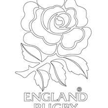 Coloriage équipe de Rugby ANGLETERRE - Coloriage - Coloriage SPORT - Coloriage RUGBY
