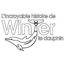 Logo Winter le Dauphin - Coloriage - Coloriage FILMS POUR ENFANTS - Coloriage WINTER LE DAUPHIN