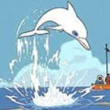Parole : Oum le dauphin