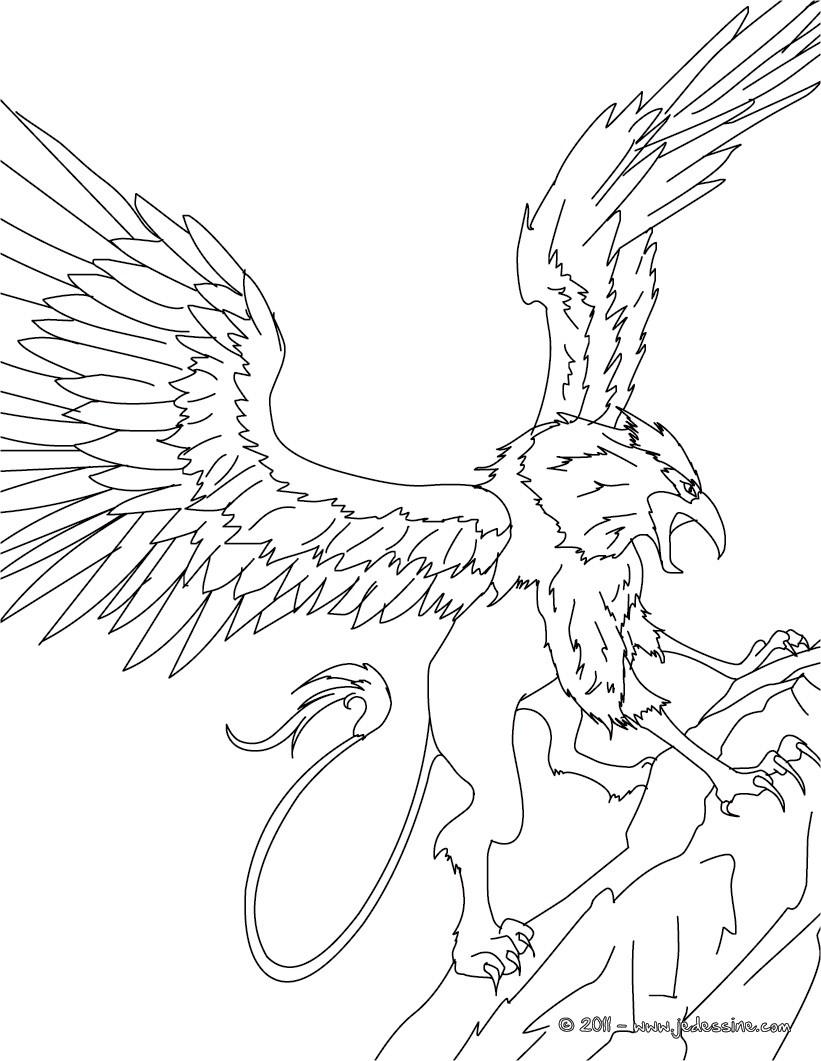 Coloriages coloriage griffon for Grifo dibujo