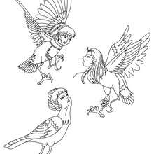 Coloriage LES 3 HARPIES - Coloriage - Coloriage HISTOIRE ET PAYS - Coloriage MYTHOLOGIE GRECQUE
